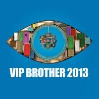 Vip Brother 2013 online